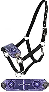 Showman Full Size Leather Bronc Halter with Purple Painted Cross Design