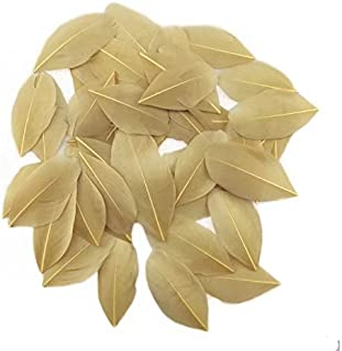 Celine lin 100 PCS Exquisite Leaf Goose Feathers For DIY Art,Home Party or Wedding 2-3.2inch(5-8cm),Khaki