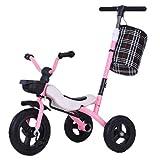 Triciclo Trike Triciclo triciclo del bebé azul, niños de múltiples funciones de Orange triciclo con ruedas de caucho, 2-6 Año rosa de la muchacha al aire libre Antiguo triciclo plegable rápida de alma