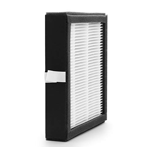 Replacement H13 Medical Grade Hepa Filter for Tenergy Sorbi