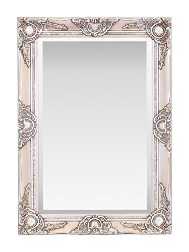 Espejo de pared de madera de Haywood, diseño vintage francés, estilo rococo barroco, 50 cm x 70 cm, decoración elegante para el hogar, champán, 50 x 70 cm