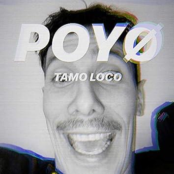 Tamo Loco