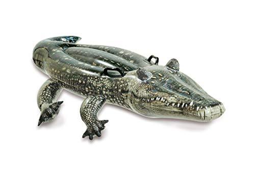 Intex Realistic Gator Ride-One, età 3+, Multicolore, 15,2 x 177,8 x 86,4 cm