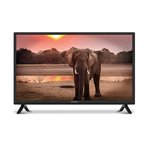 """STRONG SRT24HC4023 24"""" LED Fernseher für Wohnmobile mit DVB-T2 HD, Triple Tuner und 12 Volt Anschluss (HD, HDMI, USB, EPG, CI+, DVB-T Antenne, Hotel Modus, DVB-T/T2/C/S2, Freenet), schwarz"""