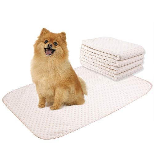 Yangbaga 4 Pzzi Tappetini di Addestramento Traverse Cani Lavabile - Pannolini Puppy per Fare i Bisogni (50 * 70cm)