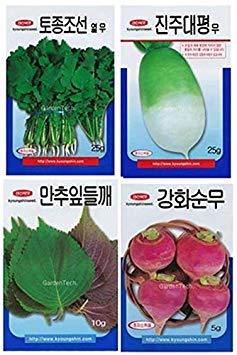 Potseed Samen Keimung: Perilla (Dleggea): Korea Gemüsesamen Kräutersamen Tree Farm Moo Landwirtschaft Garten -ige