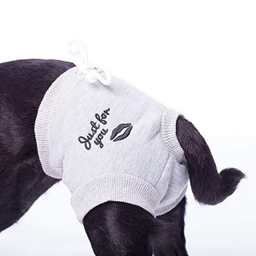 Läufigkeitshöschen für kleine Hunderassen Hundehose Hundehöschen Schutzhose mit Einlagetasche Größe: M hell grau meliert Hunde weich Baumwolle Hygiene Läufigkeit Shorts Panty Hund Höschen Hose (M)