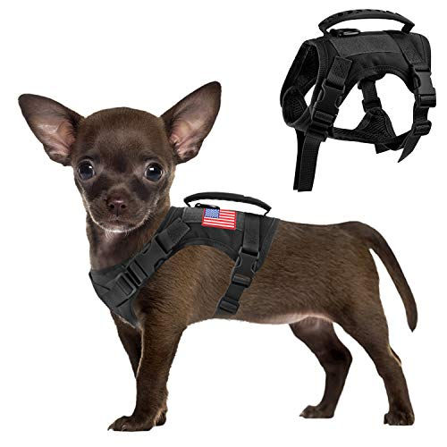 Dog Harness Pictures
