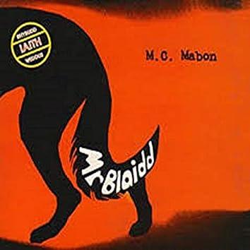 Mr Blaidd