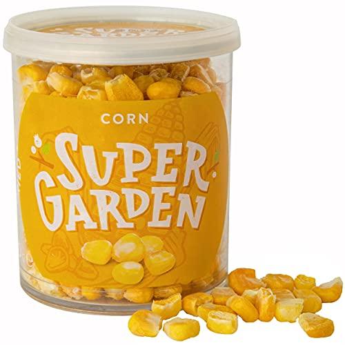 Supergarden Mais liofilizzato - Spuntino salutare - 100% Puro e naturale - Adatto ai vegani - Senza zuccheri aggiunti, senza additivi artificiali e senza conservanti - Senza glutine - Senza OGM