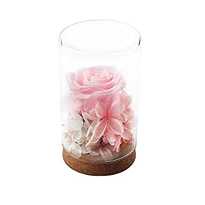 HQQD Handmade Preserved Flower Rose - Idea Gift for Girls, Never Withered Roses, Eternal Rose for Her, Gift for Valentine's Day Anniversary Christmas Birthday Wedding Holiday Present - Pink Rose