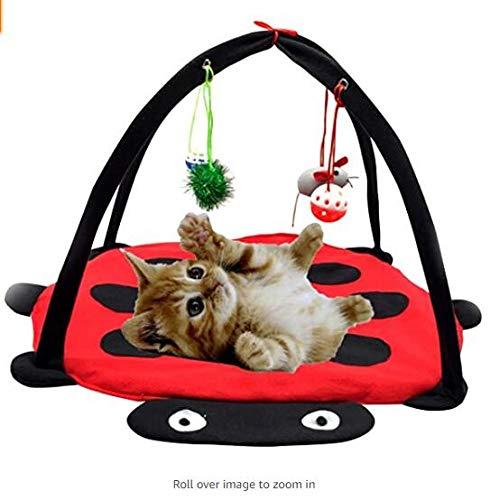 Opvouwbare kat nest gamepad kat tent met opknoping speelgoed kat mint sturen Wordt geleverd met 4 verschillende kat speelgoed