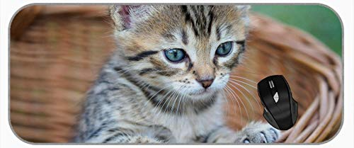 XXL Professional Großes Mauspad Haustier Katzenkorb Kleintier Mousepads