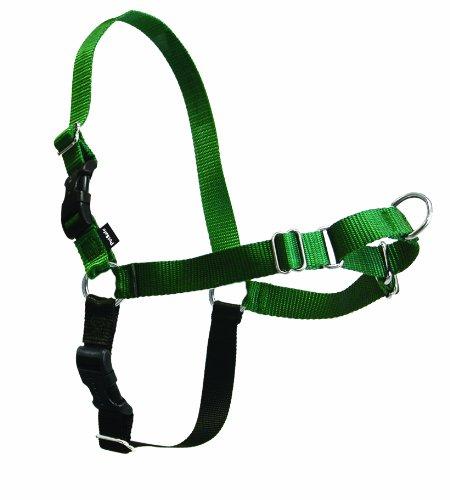 PetSafe Easy Walk Dog Harness, Small, Green/Black