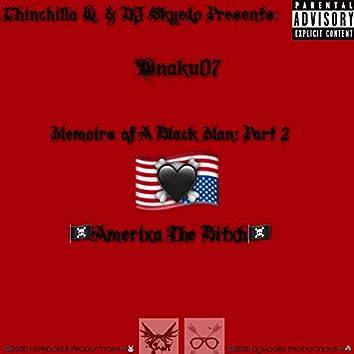 Memoirs of a Black Man Part 2, Amerixa the Bitxh