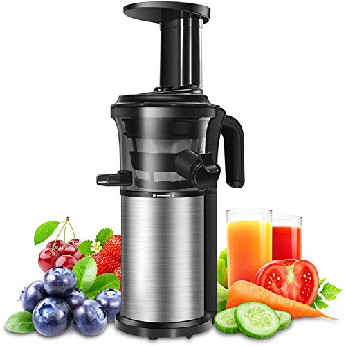 YONG Portable Juicer Slow Juicers Machine Vertical Cold Press Juicer with Reversal Function, BPA-free Masticating Juicer for Vegetables and Fruits