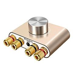 ELEGIANT Mini Bluetooth Amplificateur HiFi Stéréo Audio Wireless Terminal 50W 2 Dual Kanal Bluetooth 5.0 Digital Signal Ampl Corps en aluminium avec alimentation