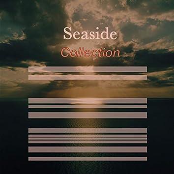 # 1 Album: Seaside Collection
