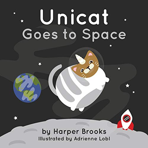 Unicat Goes to Space