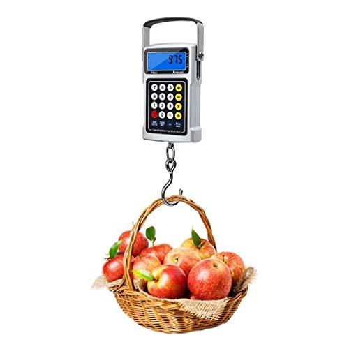 LYC Digital Angeln Waage, 50 Kg Hinterleuchtet LCD Gepäck Rahmen Mit Haken Taschenrechner Funktion Band Messen Preisgestaltung Rahmen Multifunktion (Silber d (Color : Silver, Size : 11 * 7.5 * 2.5CM)