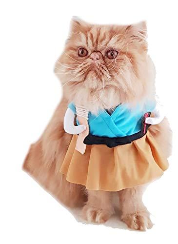 Glamour Girlz Halloween Honden Katten Blauw Jurk Samurai Fighter Karate Outfit Kostuum, Small, Meerkleurig