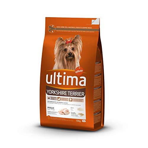 ultima Comida para Perro Yorkshire - 1500 gr