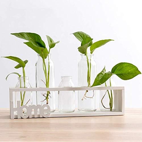 ZSPSHOP Blumenstand Zuhause Mit Flaschenlampenhydroponikbetriebsholzrahmen Für Glasbehälter des Innenministeriendekorations-Klotzes 5
