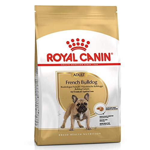 ROYAL CANIN French Bulldog 26 Adult 3 kg, 1er Pack (1 x 3 kg)