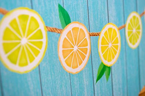 Teacher Created Resources Lemon Zest Lemonade Stand Bulletin Board (TCR8491) Photo #3