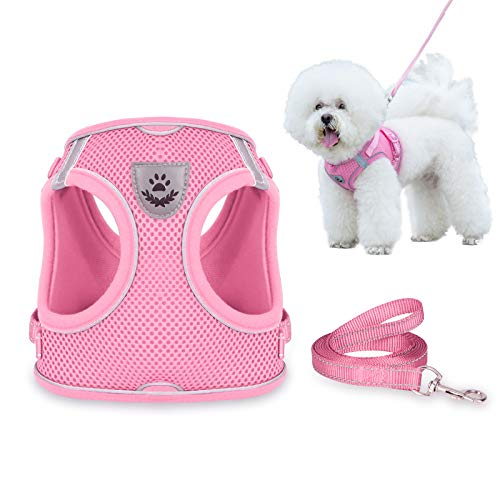 Dog Harness and Leash Set for Walking, Escape Proof Vest Harness with Soft Mesh, Adjustable Velcro, Reflective Strips for Kitten Cats and Puppy Dogs