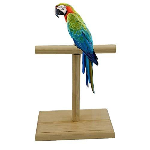 Perchoir Perroquet T Supporter Oiseaux Stand de Jeu Support de Jeu Portable pour perroquets Cockatiels Perruches Conures Green Cheek Conure Caiques à Grip Bois