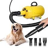 OOLOOYOO Secador de Pelo para Mascotas 2800w Secadores de Pelo Profesionales para Perros con Manguera, un Potente y silencioso secador de Perros con Velocidad Variable,Yellow