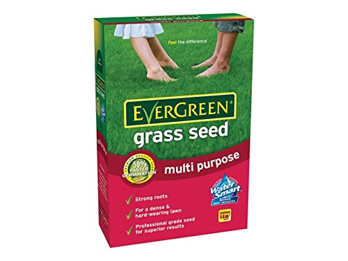 Pelouse graines GF sun Grass pro 15kg sécheresse résistantes pelouse semences de graminées semences Herbe