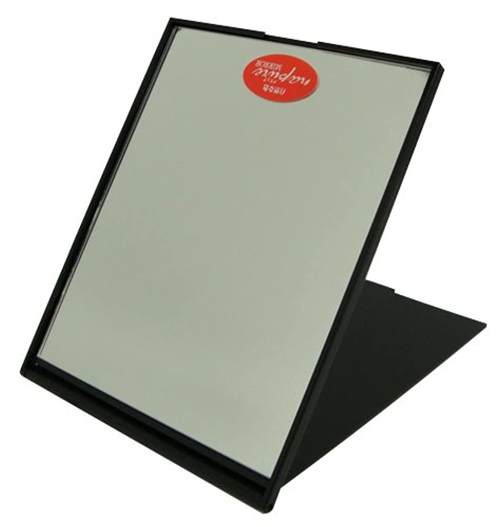 フラスコ組プレビスサイトナピュア スリム&ライトコンパクトミラー(M) メタリックブラック