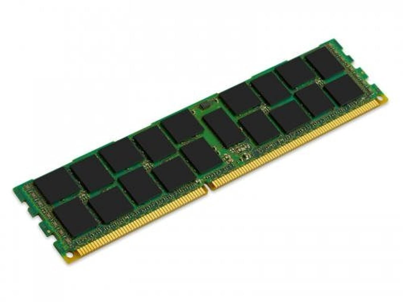 支店明確な愚かなKingston Technology 16GB 1866MHz PC3-14900 Reg ECC DIMM for Selected HP/Compaq Servers KTH-PL318/16G [並行輸入品]