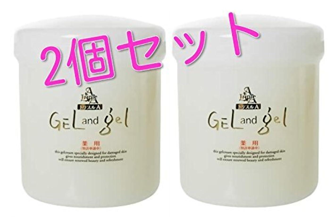 空洞幻想的引退するゲルアンドゲル (ゲル&ゲル) クリーム 500g 医薬部外品 2個セット