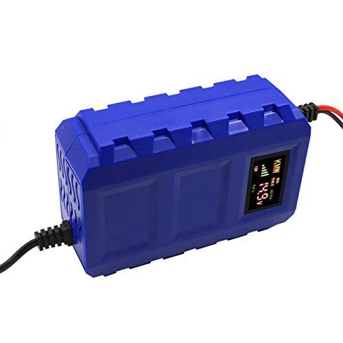 MNAD 1 2V 10A Cargador de batería Voguish Mantenedor de batería portátil (Color : EU Plug)