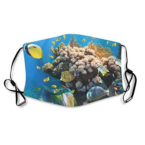 Caixiabeauty Ozean - Protector bucal de coral con trabillas para los o