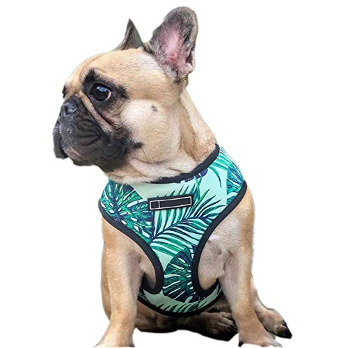 Pet Harness, Dog Vest Harness Breathable Adjustable Outdoor Training Harness for French Bulldog and Small Medium Dog (L)