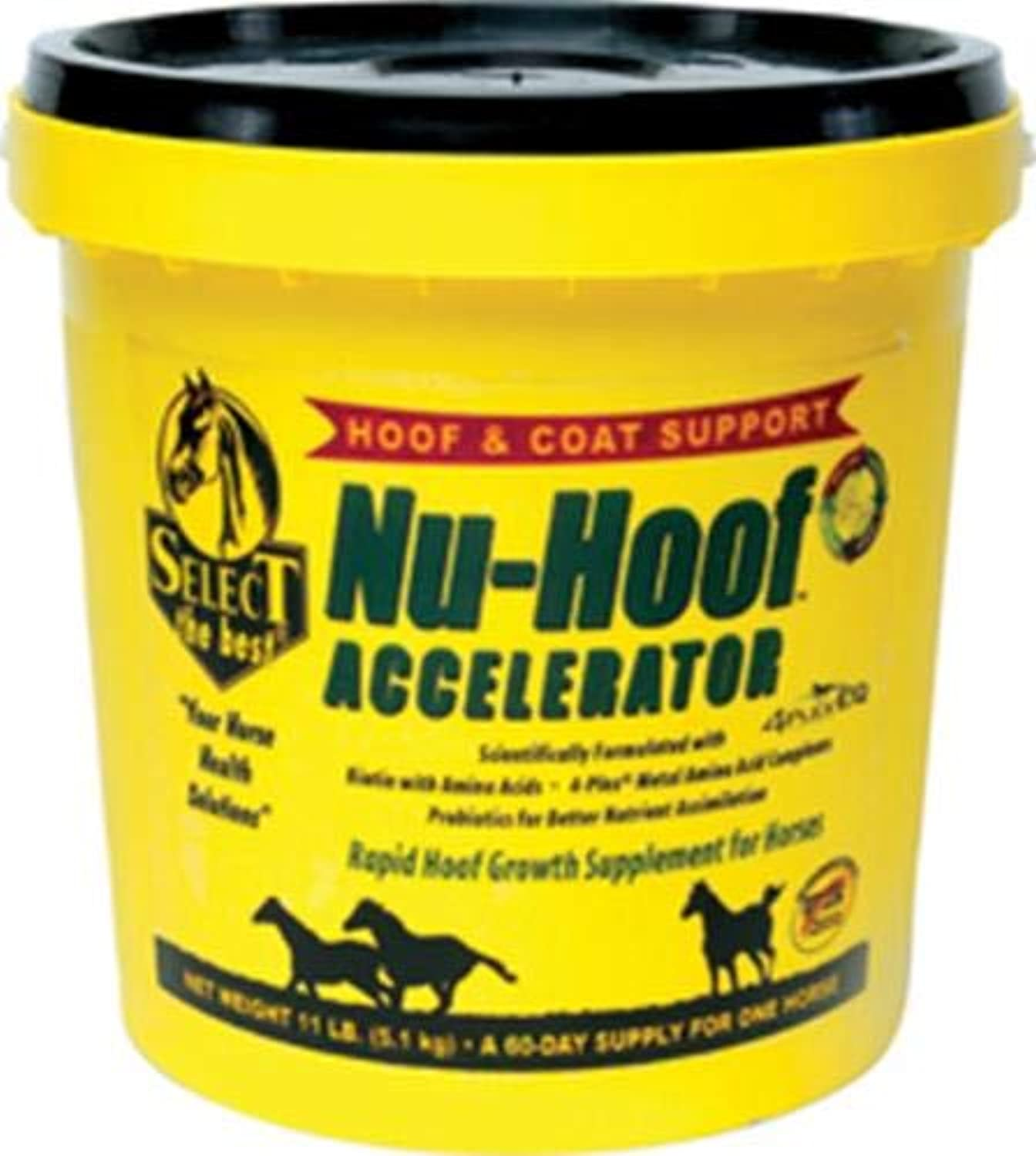 RICHDEL 784299591103 NuHoof Accelerator Hoof & Coat Support for Horses, 11 lb