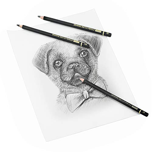TAMATA Professional Drawing Sketching Pencil Set - 12 Pieces Art Drawing Graphite Pencils(12B - 4H), Ideal for Drawing Art, Sketching, Shading, for Beginners & Pro Artists Photo #2