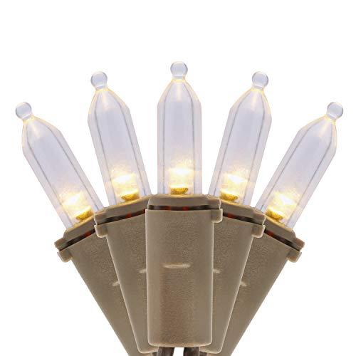 Best commercial grade led christmas lights
