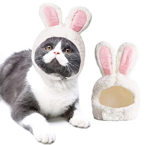 Katze Hut, Mode Bunny Ohren Hundekappe Haustier Hut Haustier Kostüm für Ostern Cosplay