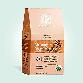 Weight Loss Tea- Detox Tea with Cinnamon & Moringa Tea with 100% Organic Biodegradable Sachets - Up to 40 Servings - 20 Count 1 Pack