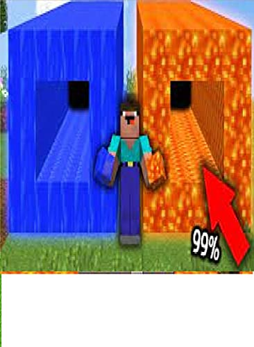 Which TUNNEL IS BETTER LAVA vs WATER in Minecraft LAVA TUNNEL vs WATER TUNNEL (English Edition)