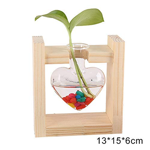 iSunday Glas Hydroponic Plant Vaas Air Planter Lamp Glas Vaas Plant Terrarium met Houten Stand Office Home Decoraties