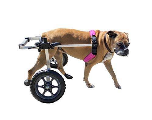 wheelchair carts K9 Carts Dog Wheelchair Large - Made in The USA
