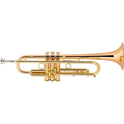Vincent Bach Bb-Trompete LT190L1B Stradivarius LT190L1B