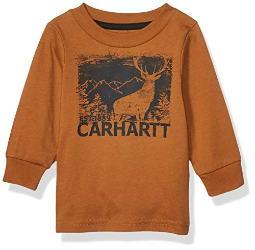 Carhartt Baby Boys Long Sleeve Graphic Tee T-Shirt, Stay Wild wrap (Blaze Orange), 12 Months