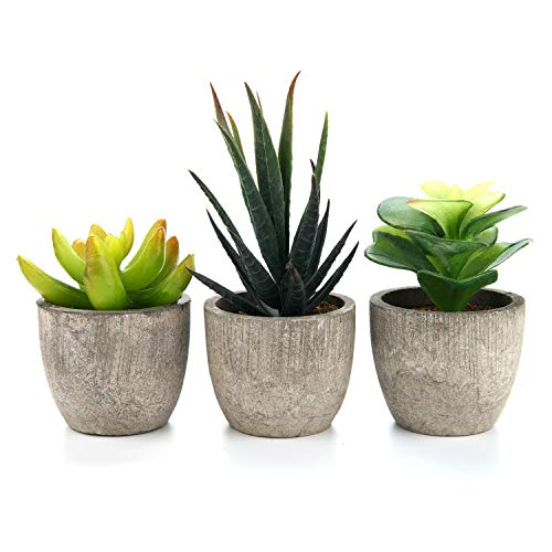T4U 3er Set Mini Künstliche Sukkulenten Pflanzen, Dekorative Kunstpflanze Bonsai mit Topf, Ideal für Balkon Büro Badezimmer Deko